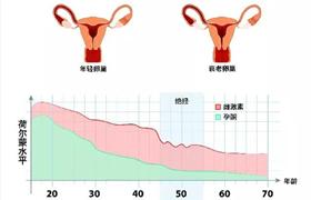 月经不仅是女性生育能力的标志,更是身体健康的信号,绝经晚的女性比同龄人更年轻,该如何科学养护卵巢?